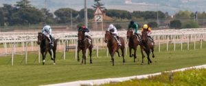 Online Sports Betting on Horse Racing
