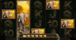 Jungle Spirit Slot Review Win