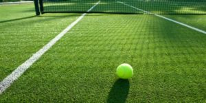 Sports Betting on Wimbledon
