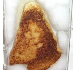 Golden Palace buy Virgin Mary Grilled Cheese on eBay