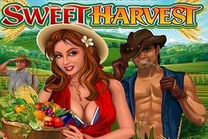 Sweet Harvest Autumn Online Slots